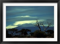 Framed Summit of Mount Kilimanjaro, Amboseli National Park, Kenya