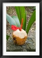 Framed Tropical cocktail drink on Fregate Island, Seychelles