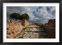 Framed Tunisia, Carthage, Roman Villas, Ancient Architecture