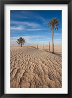 Framed Great Dune and Palm Trees, Tunisia