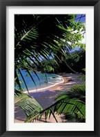 Framed Tropical Foliage and Beach, Seychelles
