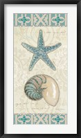 Beach Treasures I Framed Print