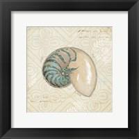 Framed Beach Treasures III