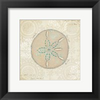 Beach Treasures IV Framed Print