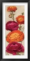 Framed Free Range Roses I
