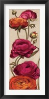 Framed Free Range Roses II
