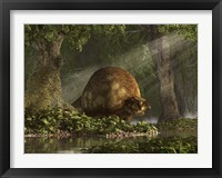 Framed large Glyptodon stands near the edge of a stream