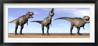 Framed Three Tyrannosaurus Rex dinosaurs standing in the desert