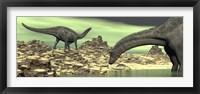 Framed Two Dicraeosaurus dinosaurs in a desert landscape