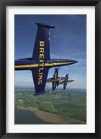 Framed 3 Aero L-39 Albatros in formation