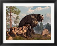 Framed saber-toothed cat tries to drive a short-faced bear out of its territory