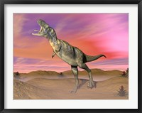 Framed Aucasaurus dinosaur roaring in the desert by sunset