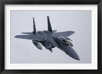 Framed F-15E Strike Eagle of the US Air Force