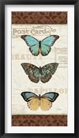 Papillons II Framed Print
