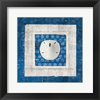 Framed Sea Shell I on Blue