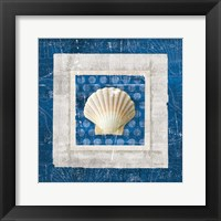 Framed Sea Shell III on Blue