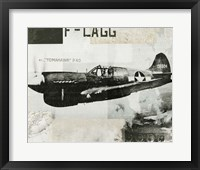 Framed Wings Collage II