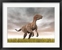 Framed Velociraptor dinosaur standing in the yellow grass