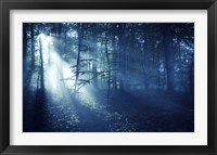 Framed Beam of light in a dark forest, Liselund Slotspark, Denmark