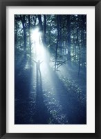 Framed Silhouette of a man standing in the misty rays of a dark forest, Denmark