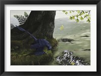 Framed Microraptor gui eating a small fish