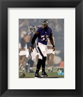 Framed Terrell Suggs 2014 Action