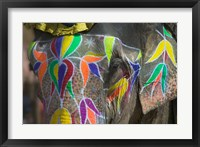 Framed Elephant Decorated with Colorful Painting, Jaipur, Rajasthan, India