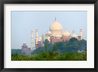 Framed Taj Mahal (UNESCO World Heritage site), Agra, India