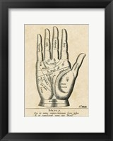 Framed Palmistry: Palm Diagram