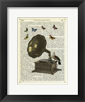 Framed Gramophone, Bird & Butterflies