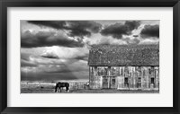 Framed Horse and Barn