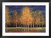 Framed Evening Grove