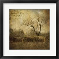 Framed Hayrollers