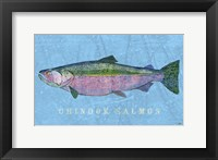 Framed Chinook Salmon