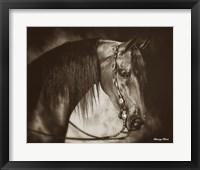 Framed Desert Arabian