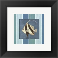 Framed Fish on Stripes I