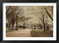 Framed Springtime Stroll