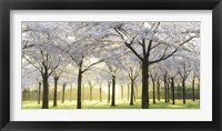 Framed Bridal Trees