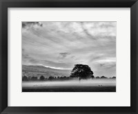 Framed Misty Weather IV