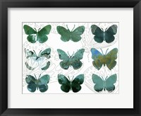 Framed Layered Butterflies I