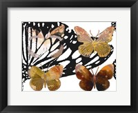 Layered Butterflies III Framed Print