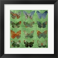 Framed Butterflies on Green