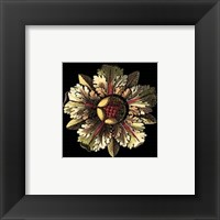 Framed Rosette on Black III