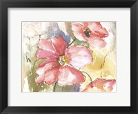Framed Soft Poppies I