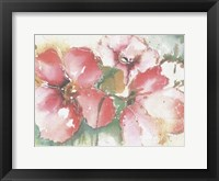 Framed Soft Poppies II