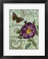 Memories of Paris II Framed Print