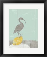 Heron Collage II Framed Print