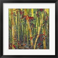 Framed Bamboo Grove I