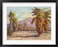 Framed Desert Repose III