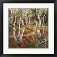 Framed Four Seasons Aspens I